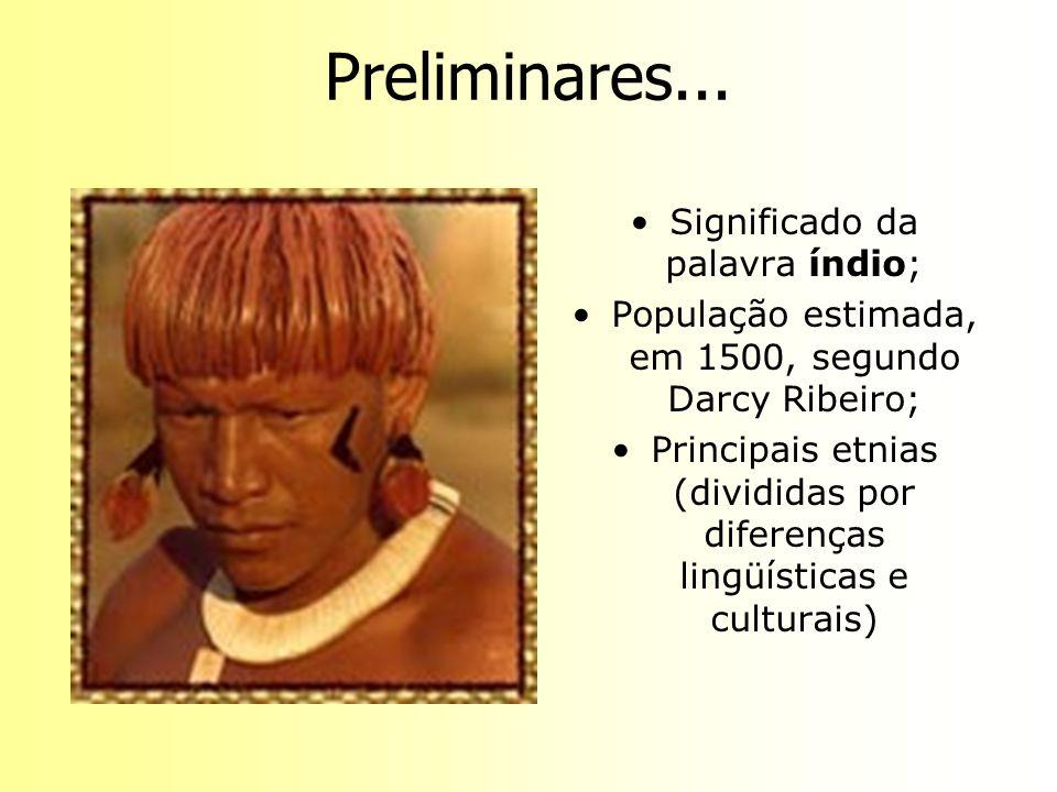 Preliminares... Significado da palavra índio; População estimada, em 1500, segundo Darcy Ribeiro; Principais etnias (divididas por diferenças lingüíst