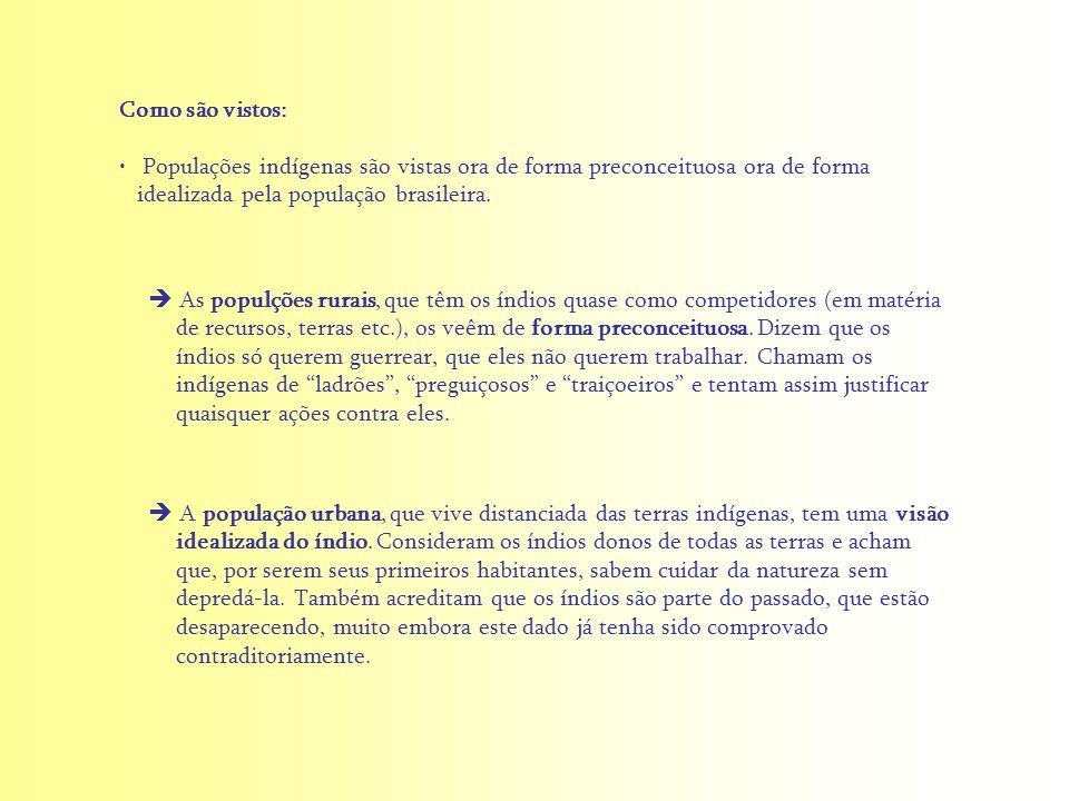 Como são vistos: Populações indígenas são vistas ora de forma preconceituosa ora de forma idealizada pela população brasileira. As populções rurais, q