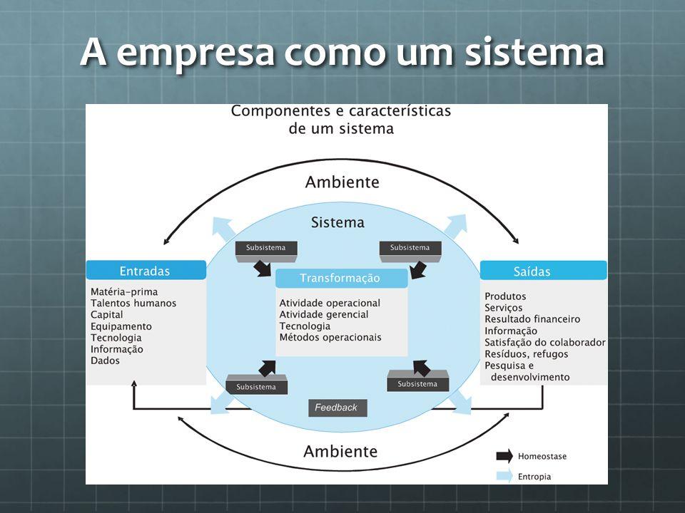A empresa como um sistema