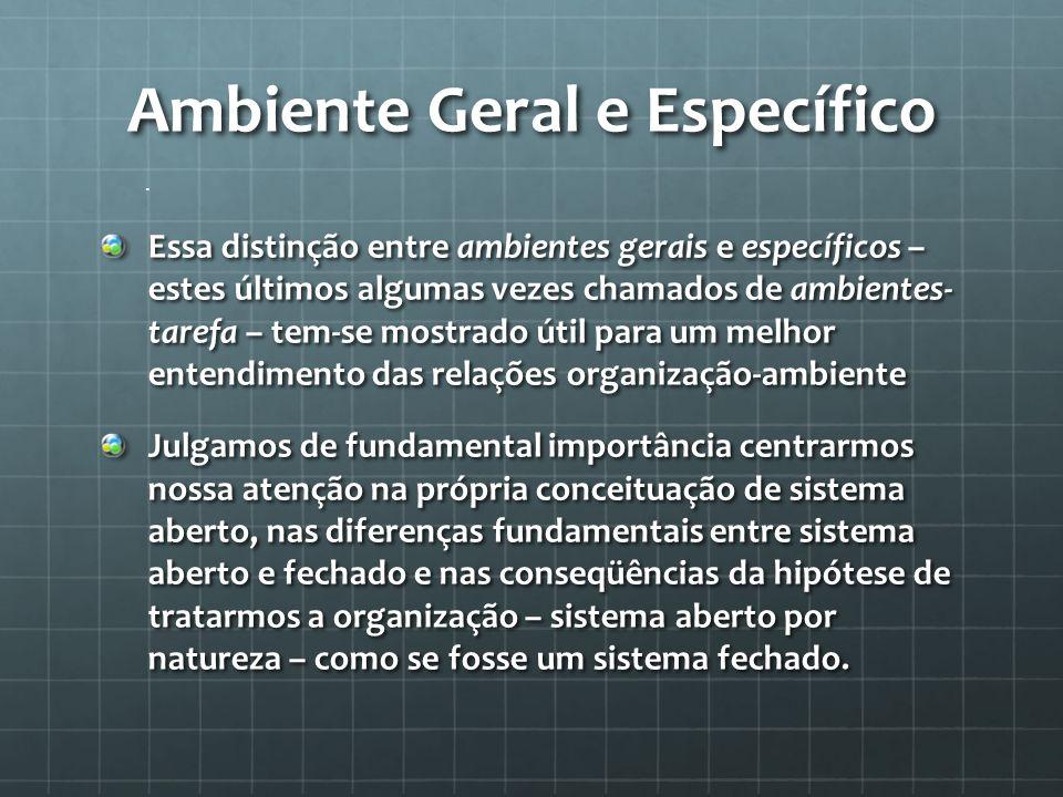 . Ambiente Geral e Específico Essa distinção entre ambientes gerais e específicos – estes últimos algumas vezes chamados de ambientes- tarefa – tem-se