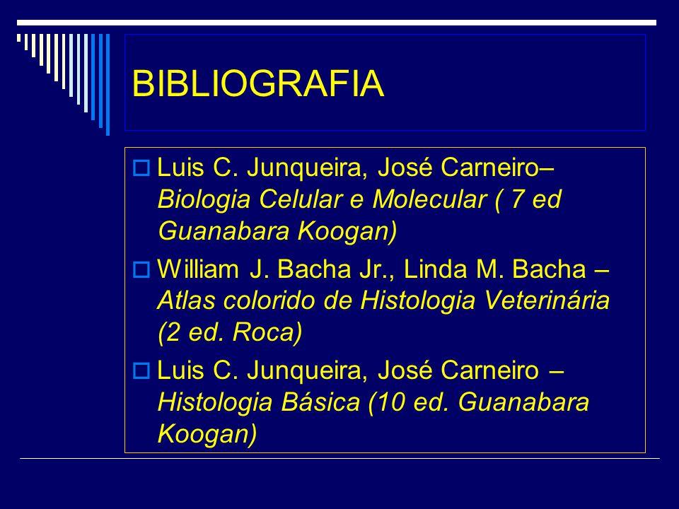 BIBLIOGRAFIA Luis C. Junqueira, José Carneiro– Biologia Celular e Molecular ( 7 ed Guanabara Koogan) William J. Bacha Jr., Linda M. Bacha – Atlas colo