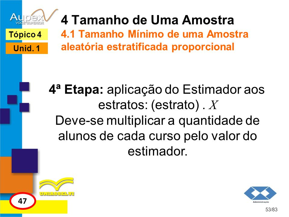 4 Tamanho de Uma Amostra 4.1 Tamanho Mínimo de uma Amostra aleatória estratificada proporcional 53/83 Tópico 4 47 Unid. 1 4ª Etapa: aplicação do Estim