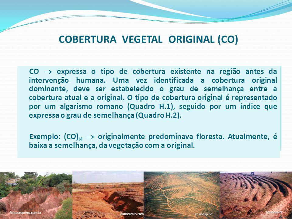 COBERTURA VEGETAL ORIGINAL (CO) Quadro H.1.Símbolos dos tipos de cobertura vegetal original.