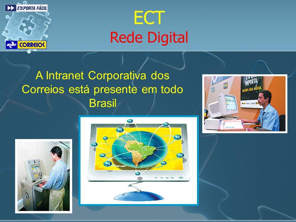 Publicidade Campanha 2006/2007
