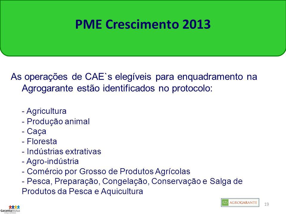 19 PME Crescimento 2013 As operações de CAE`s elegíveis para enquadramento na Agrogarante estão identificados no protocolo: - Agricultura - Produção animal - Caça - Floresta - Indústrias extrativas - Agro-indústria - Comércio por Grosso de Produtos Agrícolas - Pesca, Preparação, Congelação, Conservação e Salga de Produtos da Pesca e Aquicultura