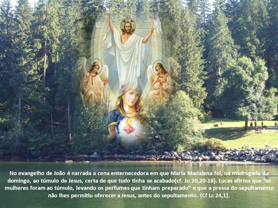 No evangelho de João é narrada a cena enternecedora em que Maria Madalena foi, na madrugada do domingo, ao túmulo de Jesus, certa de que tudo tinha se acabado(cf.