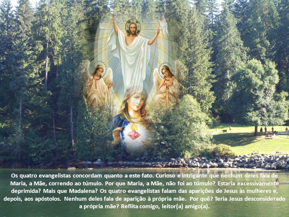 No evangelho de João é narrada a cena enternecedora em que Maria Madalena foi, na madrugada do domingo, ao túmulo de Jesus, certa de que tudo tinha se