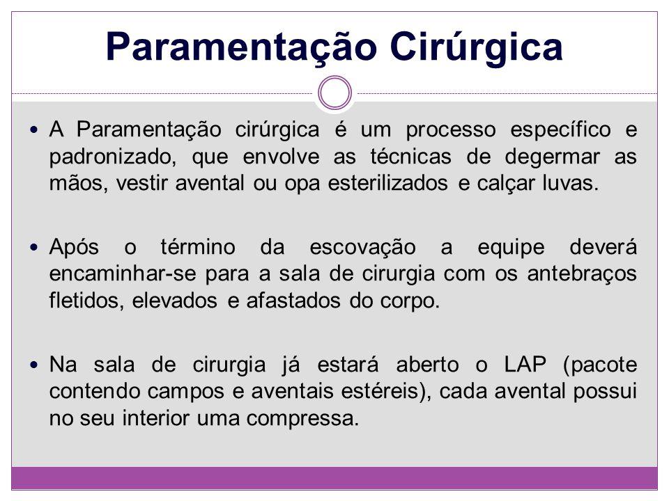 Paramentação Cirúrgica A Paramentação cirúrgica é um processo específico e padronizado, que envolve as técnicas de degermar as mãos, vestir avental ou