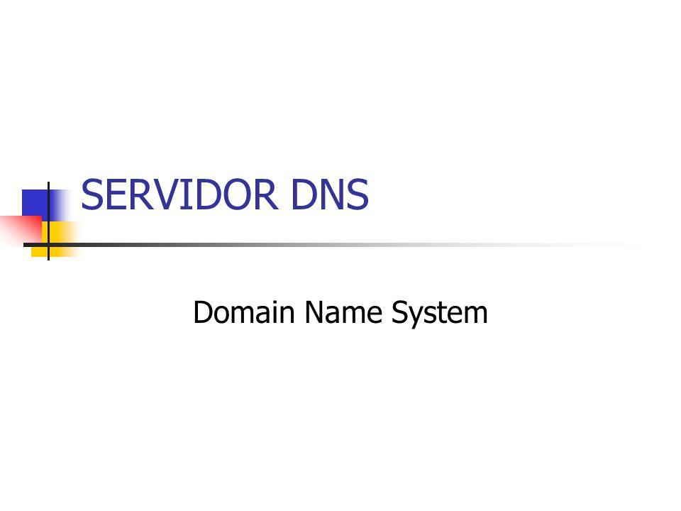 SERVIDOR DNS Domain Name System