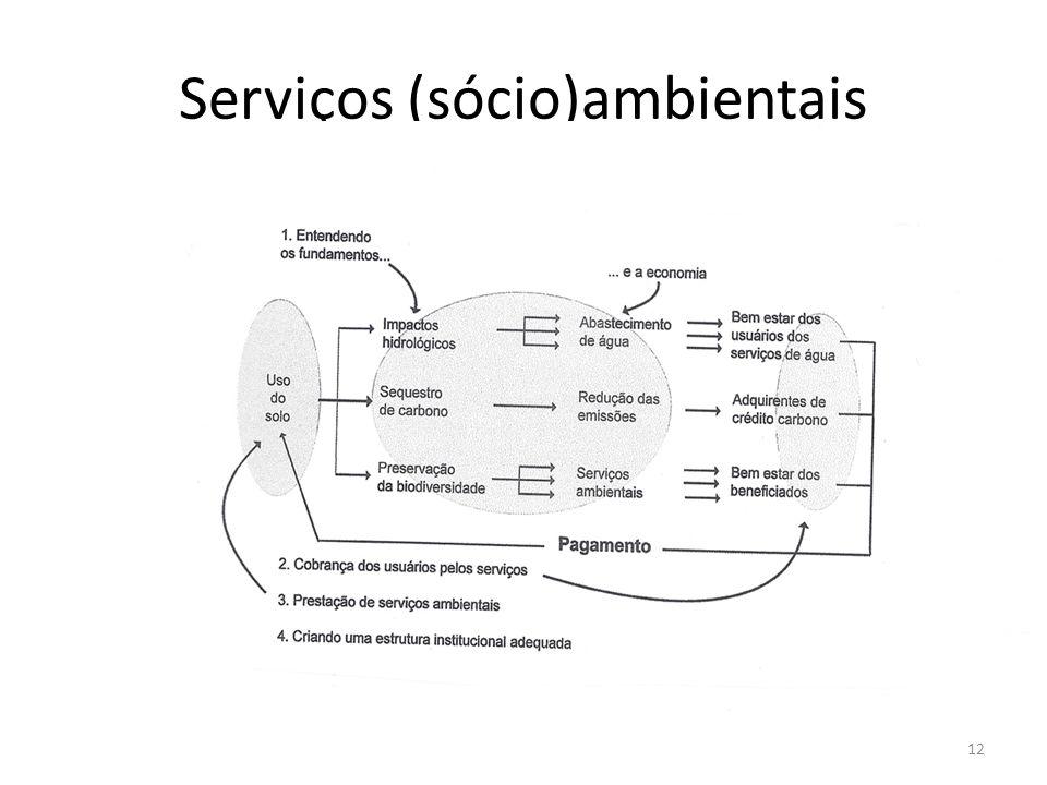 Serviços (sócio)ambientais 12