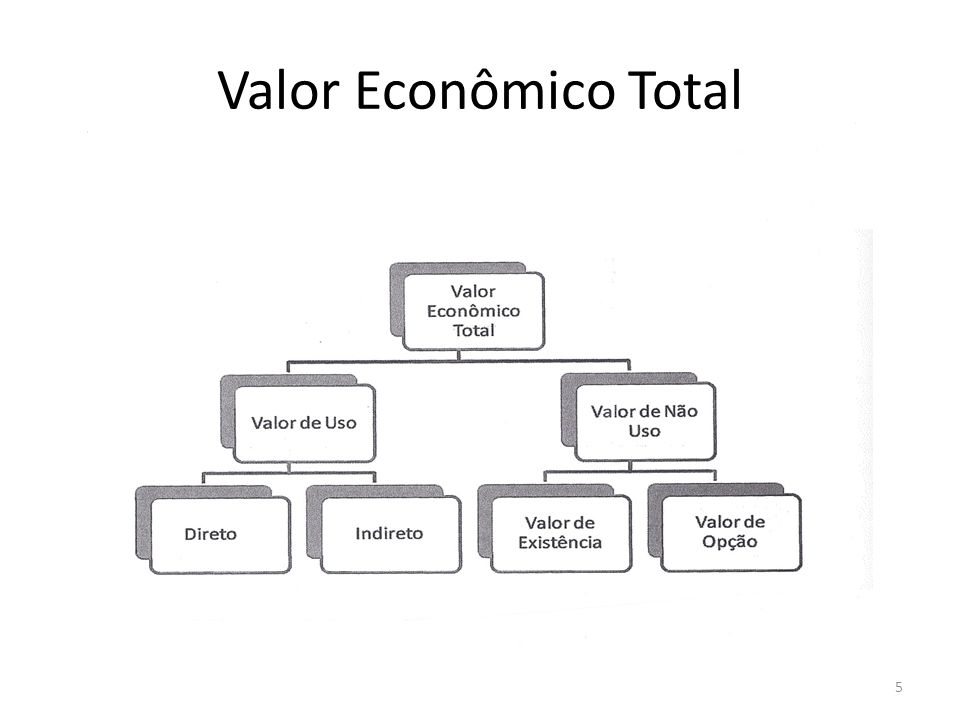 Valor Econômico Total 5