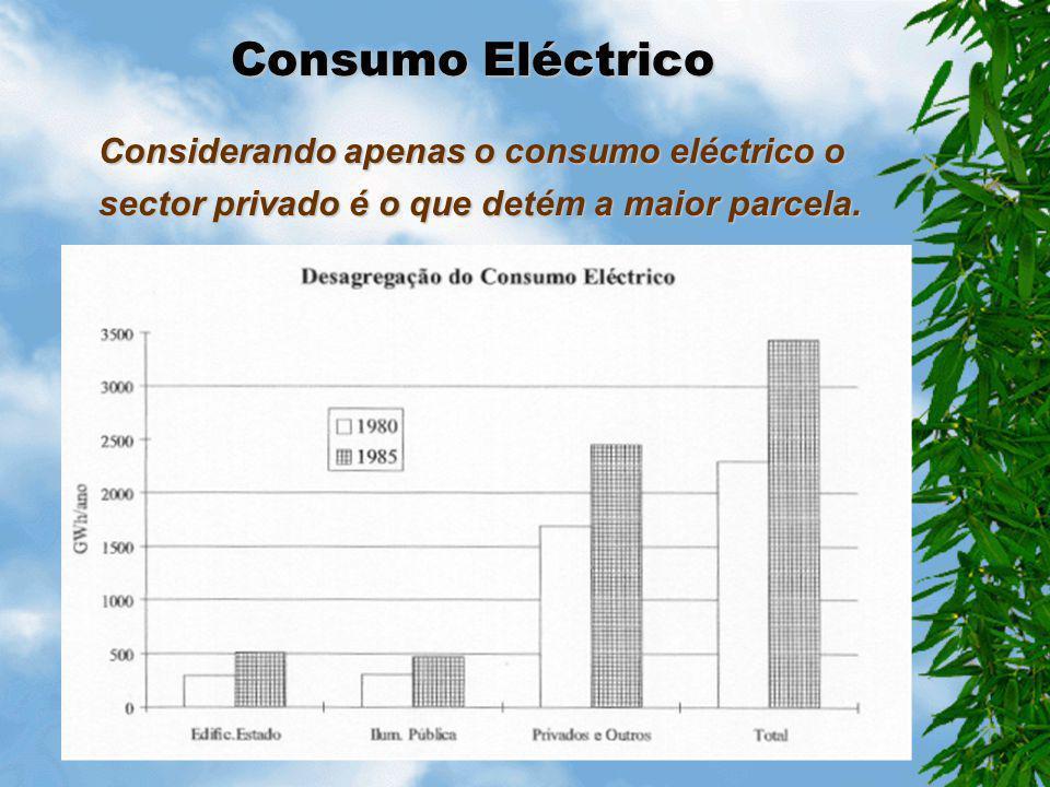 Estrutura do Consumo Há forte predominância do consumo eléctrico relativamente às restantes formas de energia.