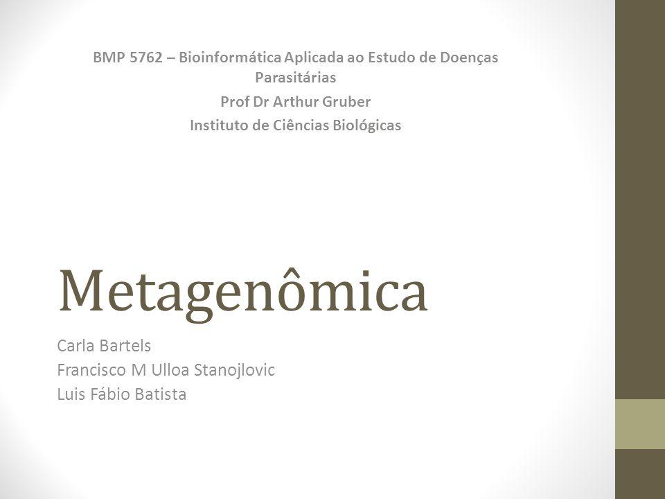 Metagenômica Carla Bartels Francisco M Ulloa Stanojlovic Luis Fábio Batista BMP 5762 – Bioinformática Aplicada ao Estudo de Doenças Parasitárias Prof