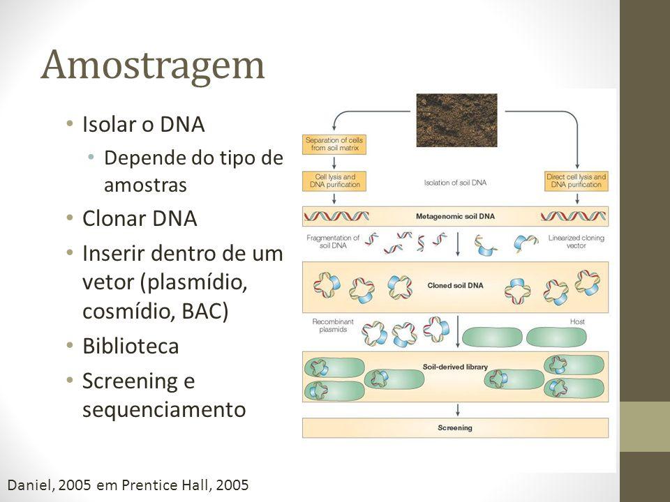 Amostragem Isolar o DNA Depende do tipo de amostras Clonar DNA Inserir dentro de um vetor (plasmídio, cosmídio, BAC) Biblioteca Screening e sequenciam