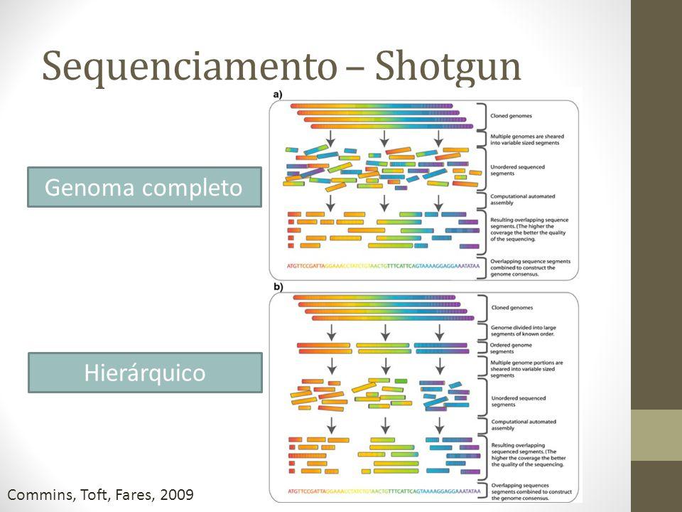 Sequenciamento – Shotgun Commins, Toft, Fares, 2009 Genoma completo Hierárquico