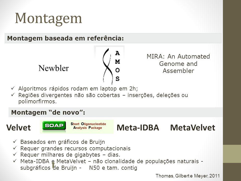 MIRA: An Automated Genome and Assembler Montagem baseada em referência: Montagem de novo: Algoritmos rápidos rodam em laptop em 2h; Regiões divergente