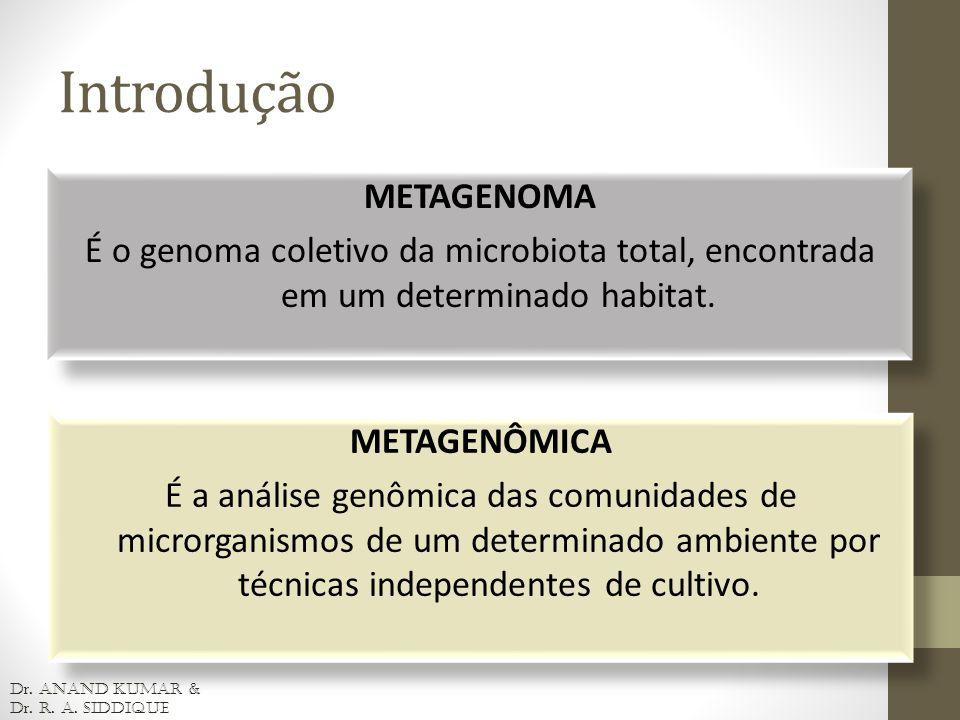 METAGENOMA É o genoma coletivo da microbiota total, encontrada em um determinado habitat. METAGENOMA É o genoma coletivo da microbiota total, encontra