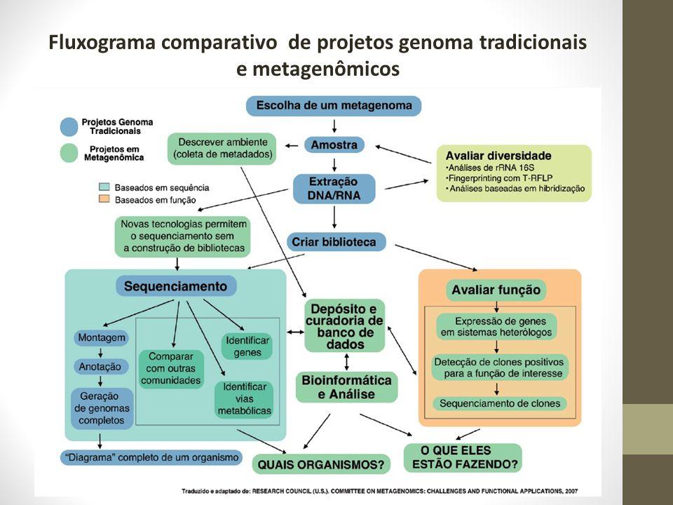 Fluxograma comparativo de projetos genoma tradicionais e metagenômicos