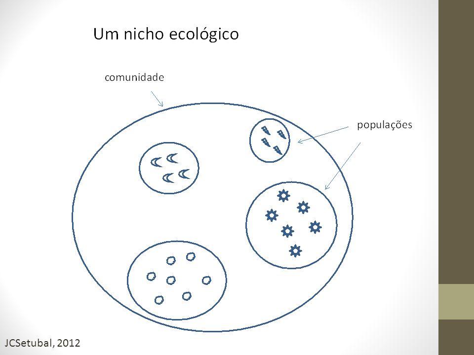 Identificação novos patógenos