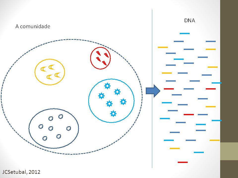 Métodos de Discriminação Processo de classificação das seqs de DNA em grupos que possam representar um genoma individual ou genomas de organismos fortemente relacionados Classificação composicional Similaridade Vários algoritmos foram desenvolvidos – empregam dois tipos de informações contidas dentro de uma dada seq DNA Pontos importantes a considerar: Tipo de dado de entrada disponível Existência de training datasets adequados ou genomas de referência Algumas ferramentas combinam os dois approachs – PhymmBl, MetaCluster Pontos importantes a considerar: Tipo de dado de entrada disponível Existência de training datasets adequados ou genomas de referência Algumas ferramentas combinam os dois approachs – PhymmBl, MetaCluster Thomas et al, 2012; Liu, 2012