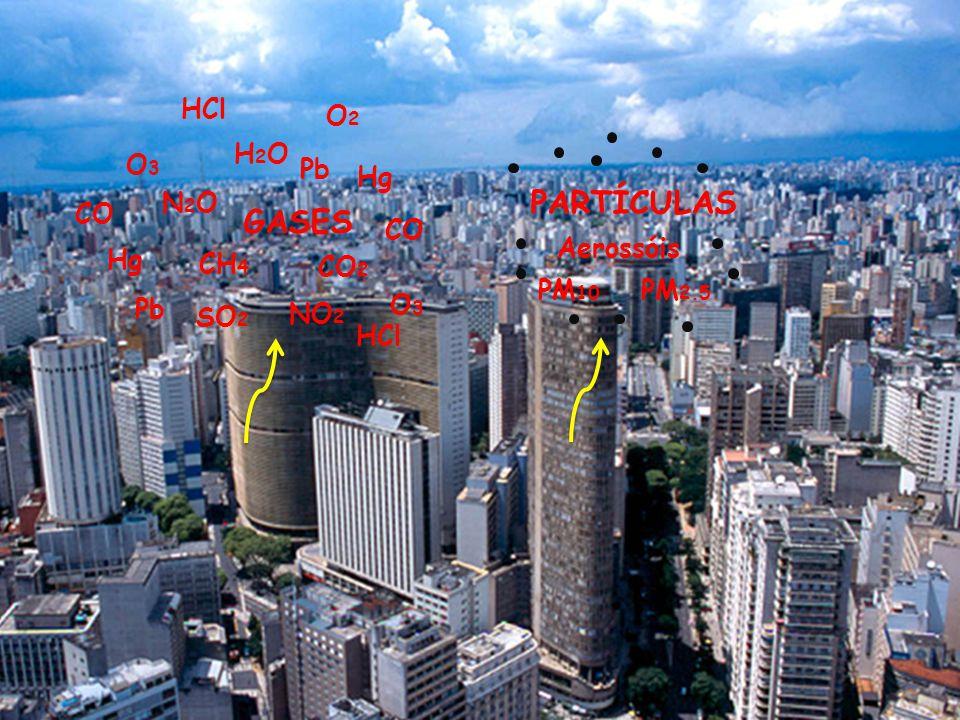 Motivação: efeitos dos aerossóis atmosféricos à saúde humana Inalação de material particulado: asma, aumento de sintomas respiratórios, inflamação pulmonar, redução da função pulmonar, e doenças cardiovasculares O aumento da concentração de MP está associado com um aumento de mortalidade http://aerosol.ees.ufl.edu/atmos_aer osol/section07-2.html Risco relativo ajustado para mortalidade total e níveis de PM2.5 em seis cidades.