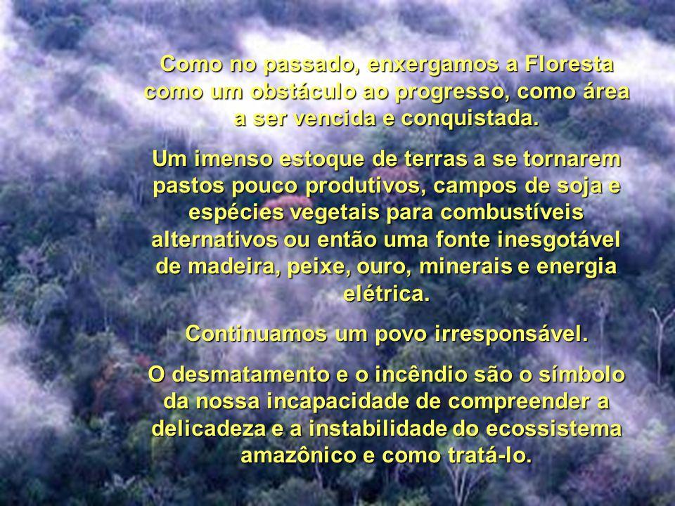 Mesmo depois do sangue de Chico Mendes ter selado o pacto de harmonia homem/natureza, entre seringueiros e indígenas, mesmo depois da aliança dos povo