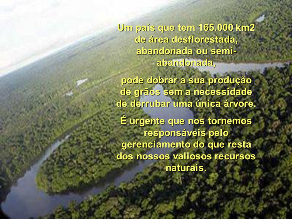 Um país que tem 165.000 km2 de área desflorestada, abandonada ou semi- abandonada, pode dobrar a sua produção de grãos sem a necessidade de derrubar uma única árvore.