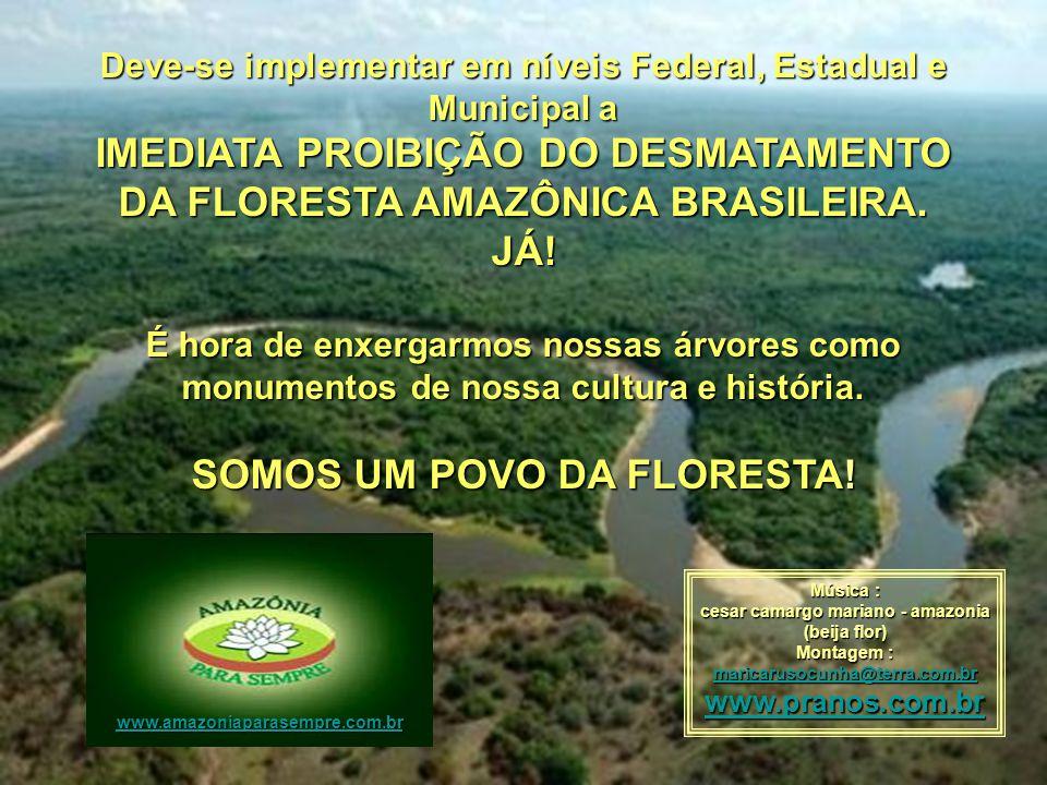 Deve-se implementar em níveis Federal, Estadual e Municipal a IMEDIATA PROIBIÇÃO DO DESMATAMENTO DA FLORESTA AMAZÔNICA BRASILEIRA.