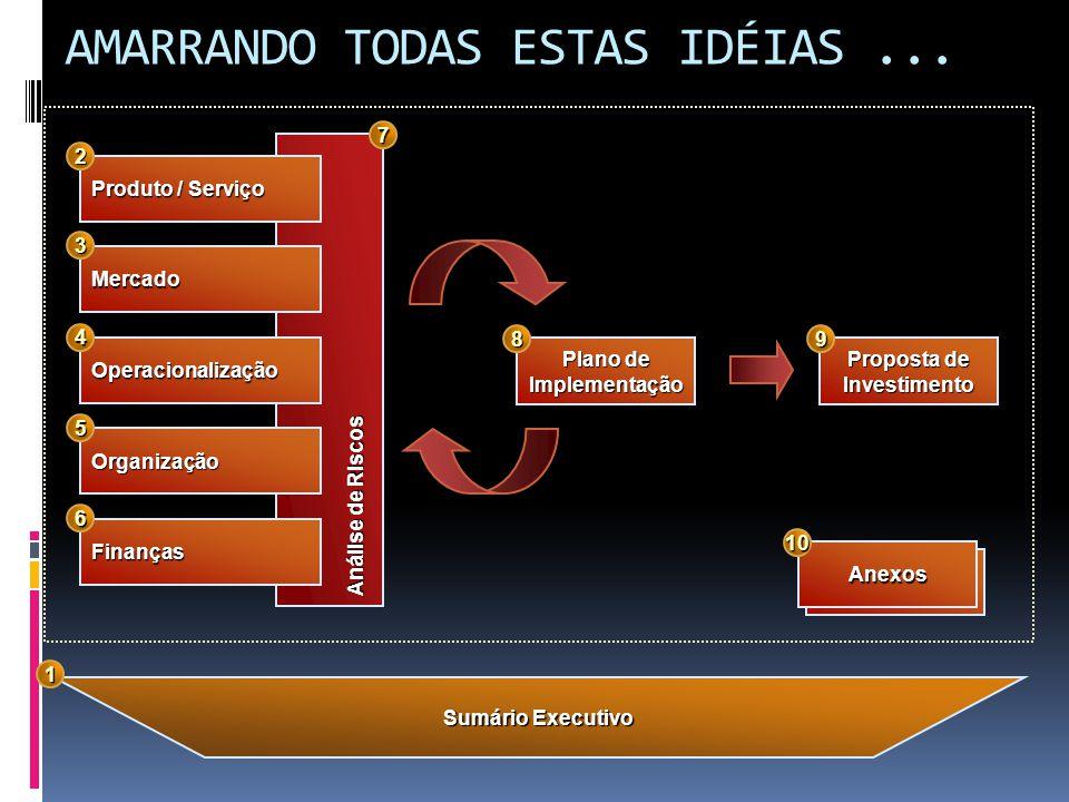 AMARRANDO TODAS ESTAS IDÉIAS... Análise de Riscos Produto / Serviço Mercado Operacionalização Organização Finanças Sumário Executivo Proposta de Inves