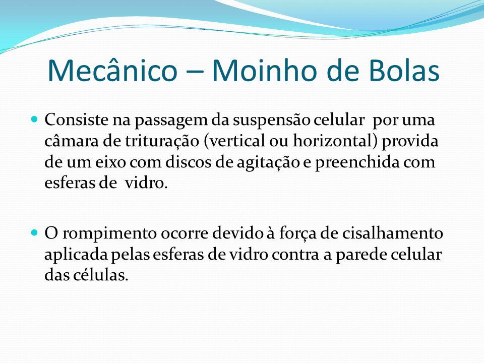 Mecânico – Moinho de Bolas Consiste na passagem da suspensão celular por uma câmara de trituração (vertical ou horizontal) provida de um eixo com disc