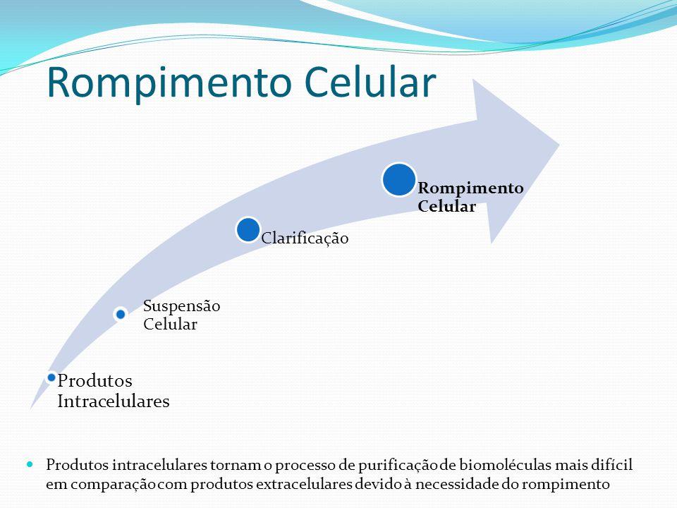 Rompimento Celular Suspensão Celular Clarificação Rompimento Celular Produtos Intracelulares Produtos intracelulares tornam o processo de purificação