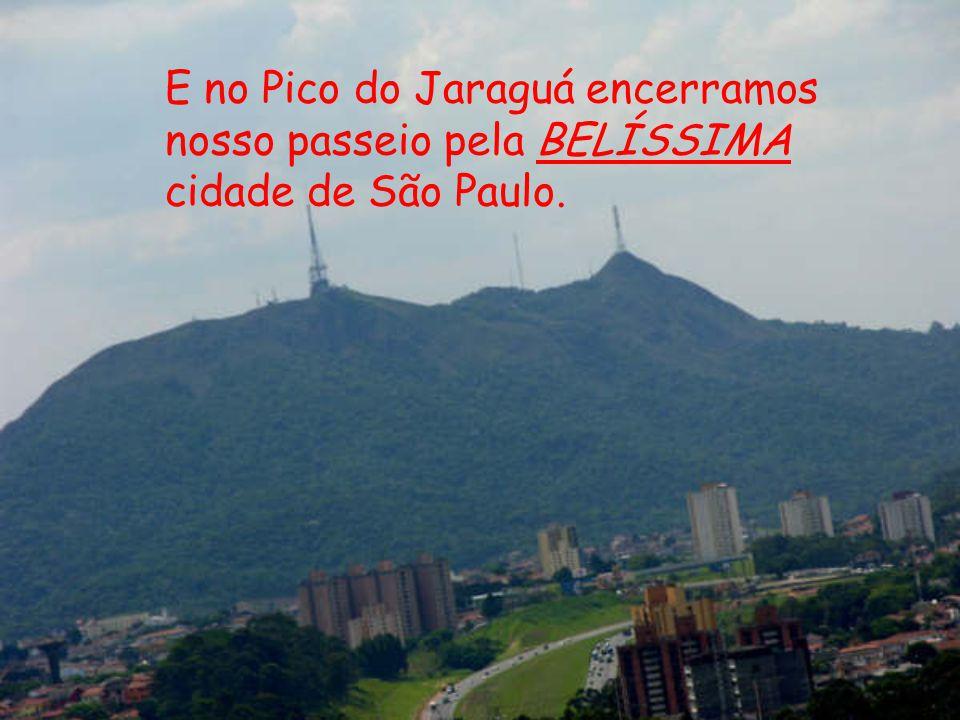 E no Pico do Jaraguá encerramos nosso passeio pela BELÍSSIMA cidade de São Paulo.