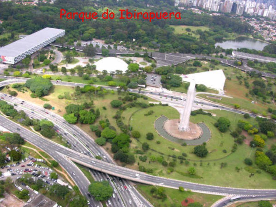 O lago do Parque do Ibirapuera