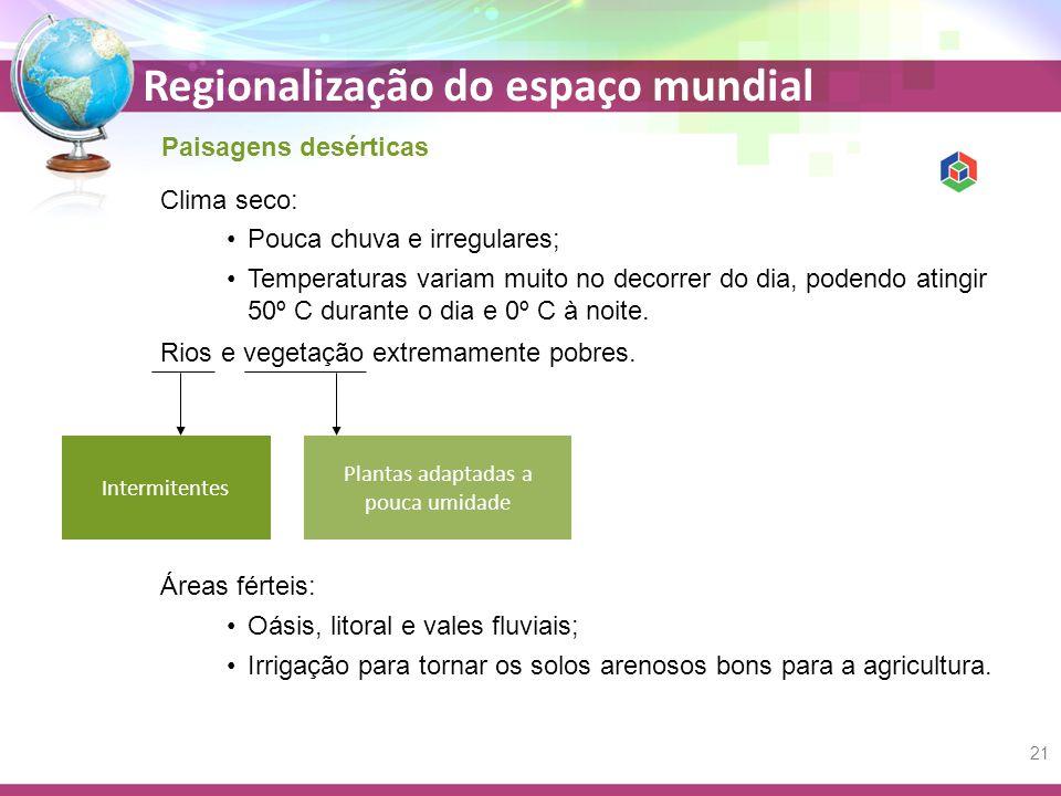 Regionalização do espaço mundial Paisagens desérticas Clima seco: Rios e vegetação extremamente pobres.