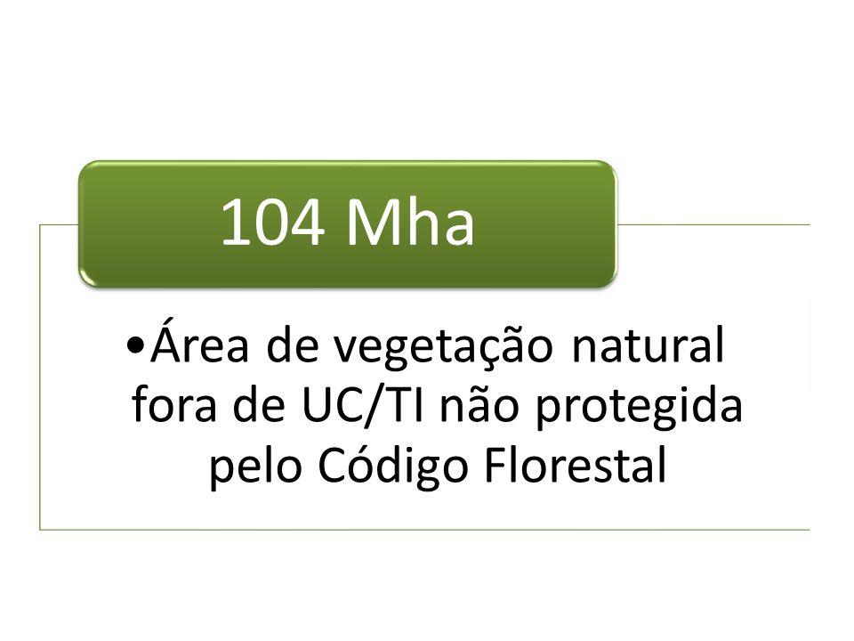 Área de vegetação natural fora de UC/TI não protegida pelo Código Florestal 104 Mha