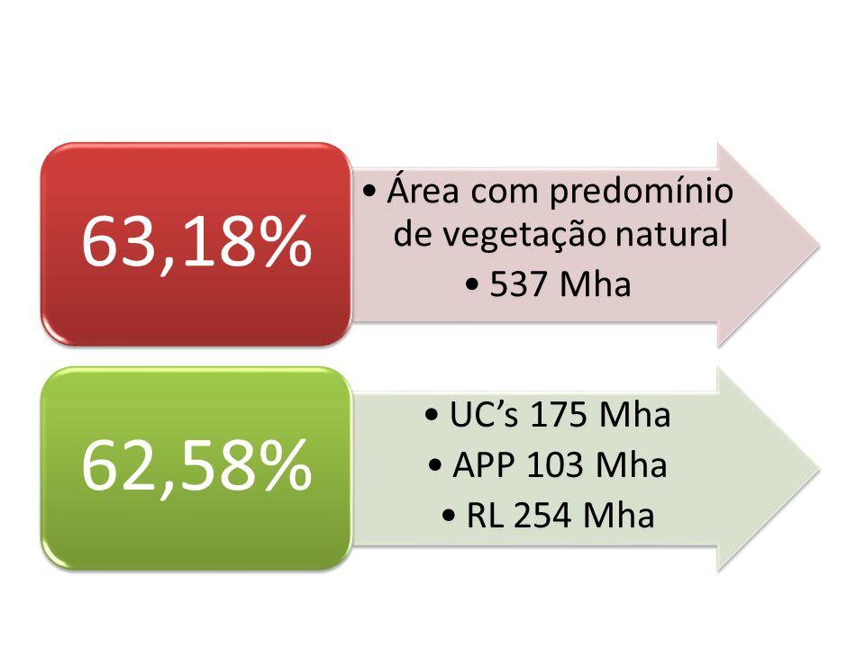 Área com predomínio de vegetação natural 537 Mha 63,18% UCs 175 Mha APP 103 Mha RL 254 Mha 62,58%