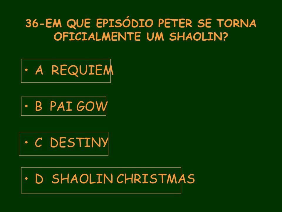 36-EM QUE EPISÓDIO PETER SE TORNA OFICIALMENTE UM SHAOLIN.