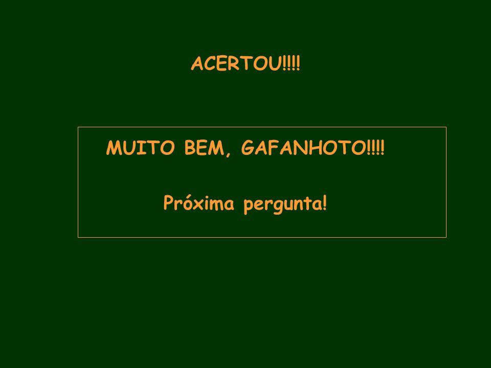 ACERTOU!!!! MUITO BEM, GAFANHOTO!!!! Próxima pergunta!