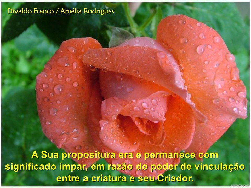 Divaldo Franco / Amélia Rodrigues A Sua propositura era e permanece com significado ímpar, em razão do poder de vinculação entre a criatura e seu Criador.
