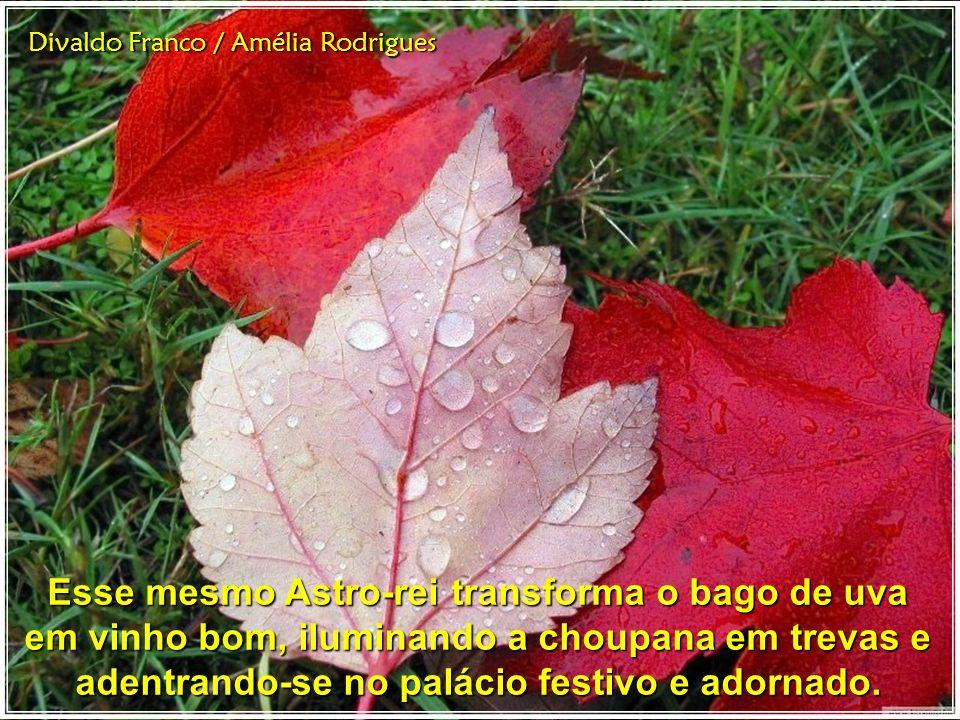Divaldo Franco / Amélia Rodrigues Esse mesmo Astro-rei transforma o bago de uva em vinho bom, iluminando a choupana em trevas e adentrando-se no palácio festivo e adornado.