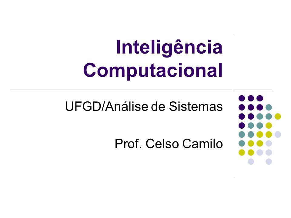 Inteligência Computacional UFGD/Análise de Sistemas Prof. Celso Camilo