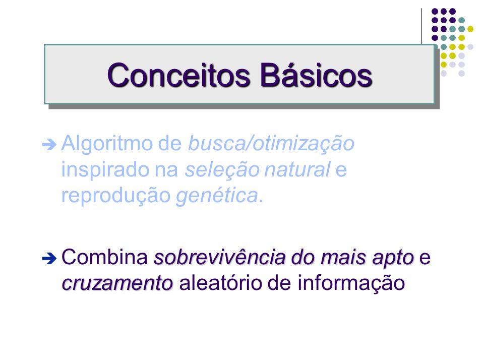Conceitos Básicos busca/otimização seleção natural genética Algoritmo de busca/otimização inspirado na seleção natural e reprodução genética.