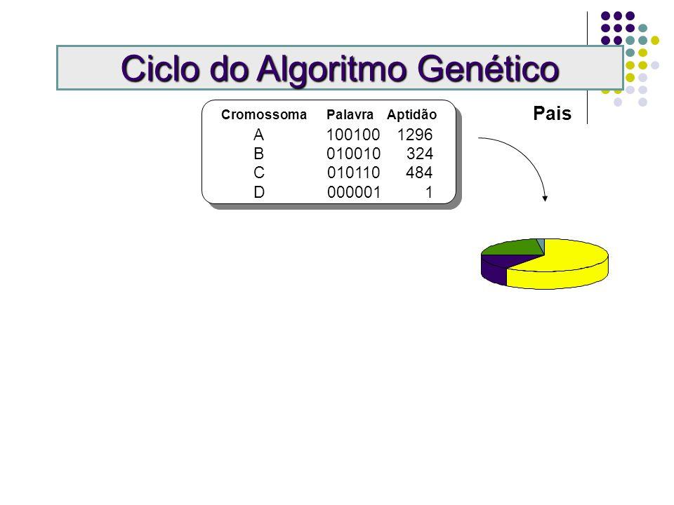 Cromossoma Palavra Aptidão A 100100 1296 B 010010 324 C 010110 484 D 000001 1 Ciclo do Algoritmo Genético