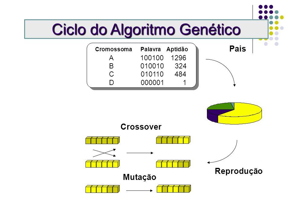 Cromossoma Palavra Aptidão A 100100 1296 B 010010 324 C 010110 484 D 000001 1 Pais Ciclo do Algoritmo Genético