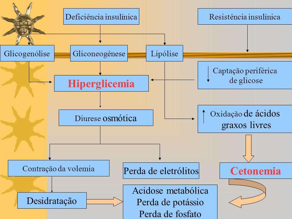 Deficiência insulínica Gliconeogênese Hiperglicemia Diurese osmótica Contração da volemia Perda de eletrólitos Desidratação Acidose metabólica Perda d