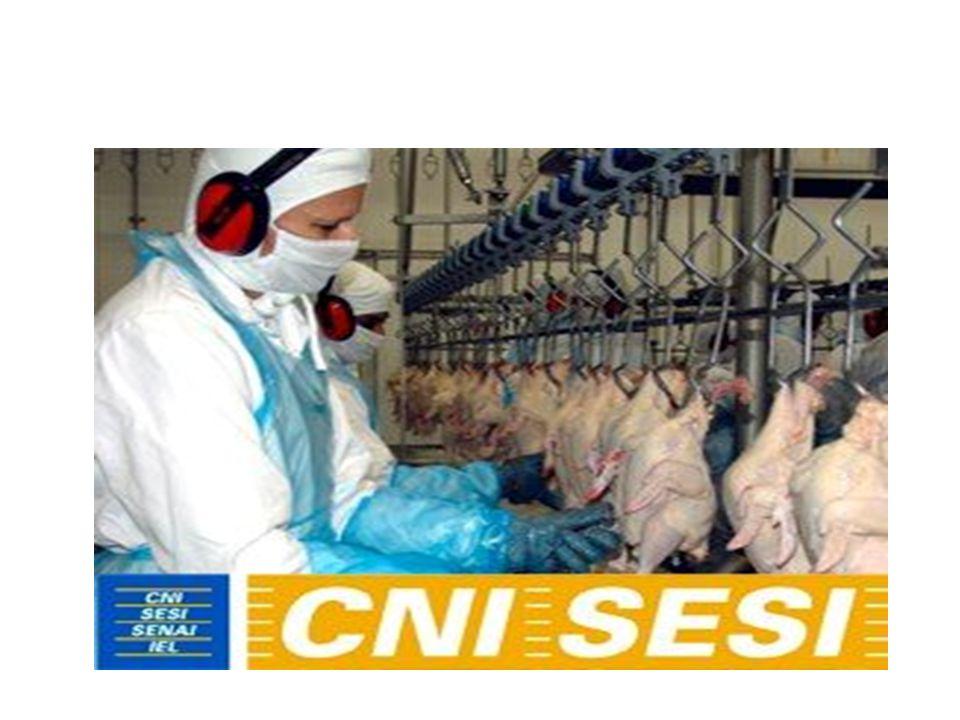 RENAST Cerest - tem papel regional, epidemiológico (diagnóstico), quadro com médicos do trabalho, fisioterapeutas e técnicos de segurança.