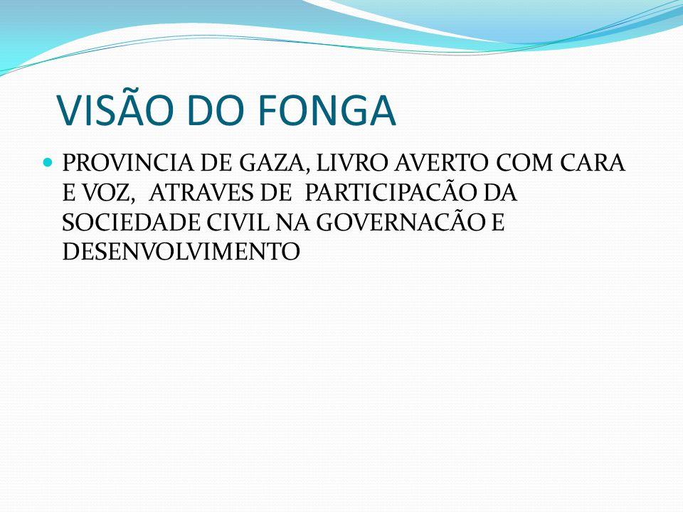 VISÃO DO FONGA PROVINCIA DE GAZA, LIVRO AVERTO COM CARA E VOZ, ATRAVES DE PARTICIPACÃO DA SOCIEDADE CIVIL NA GOVERNACÃO E DESENVOLVIMENTO