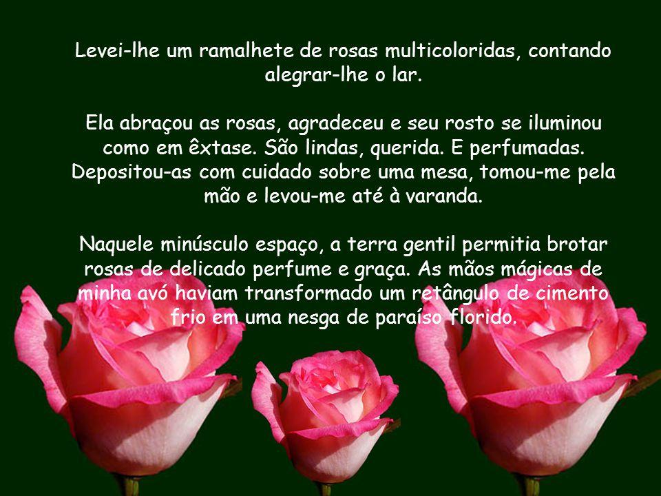 Levei-lhe um ramalhete de rosas multicoloridas, contando alegrar-lhe o lar.