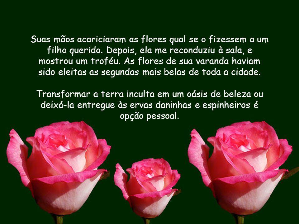 Suas mãos acariciaram as flores qual se o fizessem a um filho querido.