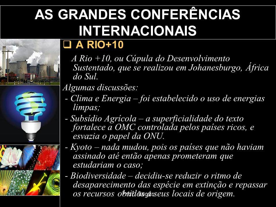 Prof. Bogéa AS GRANDES CONFERÊNCIAS INTERNACIONAIS A RIO+10 A Rio +10, ou Cúpula do Desenvolvimento Sustentado, que se realizou em Johanesburgo, Áfric